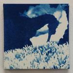 条鰭鋼 -type01- / 2013 ED.5 S0号(180×180mm) cyanotype 紙 木製パネル