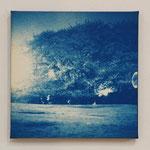 2012.04.09 -02- / 2012 SSMサイズ(226×226mm) cyanotype 紙 木枠