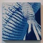 爬虫鋼 -type01- / 2013 ED.5 S0号(180×180mm) cyanotype 紙 木製パネル ★