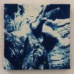 流木 -type01- / 2013 ED.5 S0号(180×180mm) cyanotype 紙 木製パネル ★