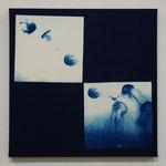 鉢虫鋼 -群れ- / 2013 ED.5 S4号(333×333mm) cyanotype 紙 木製パネル