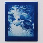 2011.02.05 / 2012 F8号(380×455mm) cyanotype 紙 木製パネル