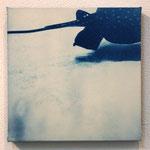 軟骨魚鋼 -type02- / 2013 ED.5 S0号(180×180mm) cyanotype 紙 木製パネル ★