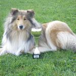 erfolgreichster Ausstellungsjunghund 2009