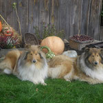Eileen und Jolly im Oktober ´13