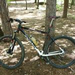 "Testbike Focus ""Black Forest"""