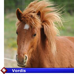 Vordis  ( VERKAUFT)