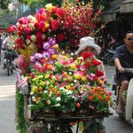 Marchande de fleurs à vélo
