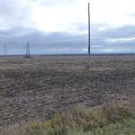 Les terres cerealieres entourant l usine