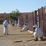 Scène de vie sur le marché aux chameaux