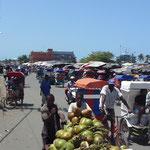 Pousse à Tamatave