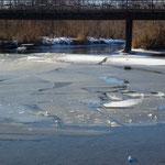 Cours d eau gele