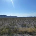Paysage désertique