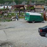 Cohabitation voitures, anes et mules