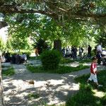 La vie dans les parcs en fin d apres midi