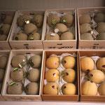 Les fruits sont vendus à l'unité