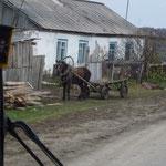 Vue une seule fois dans un village