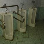 Ici, une seule dimension d'urinoire pour petits et grands