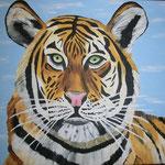 Tiger 2013 / 30x40 /  vergeben