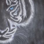 Verkäuflich!   Tiger auf Leinwandkarton 30x70cm Dez. 2015