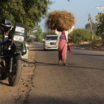 MMR - Bagan nach Mt. Pago