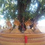 LAO - Vientiane Wat Thatluang