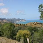 Waiapu Bay