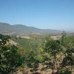 THA - Phayao-Region