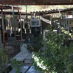 IR - Friedhof Behesht-e Zahra