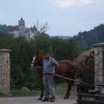 RO - Dracula-Schloss in Bran