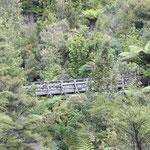 Hunua Ranges