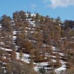 IR - die Berge hinter Hashtpar
