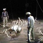 流木による舞台美術:『イヌイヌ』(西田シャトナー演劇研究所・2008年)
