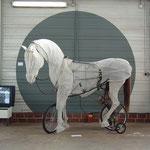 Billie Lynn, Horse