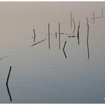 Repères filets de pêche (Vaccarès)