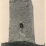 Die Seweckenwarte um 1955