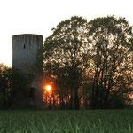 Sonnenuntergang an der Bicklingswarte