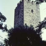 Die Steinholzwarte 1982