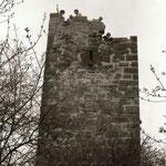 Die Steinholzwarte 1984