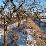 Der Landgraben zwischen der Suderoder Chaussee und dem Gleis der Selketal-Bahn
