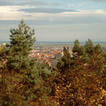 Blick von der Altenburgwarte zur Stadt 2003