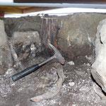 Eine der Baumwurzel in der Mauerkrone