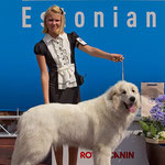 Echo de'Chien Bianca - Baltic Winner 2013, Winter Cup Winner 2013, Best female in Estonian Specialty show 2013, 1 CAC away compleating her Estonian and Latvian Champion title