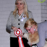 Echo de'Chien Conrad - BEST IN SHOW PUPPY