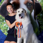 Echo de'Chien Bianca - CAC & res-CACIB/CACIB = FI & CIB Ch in World Winner 2014. Photo Pille Saar