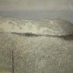 Zeeland. Domburg. № 6.     2014 г.    Холст, акрил.    60х70 см.