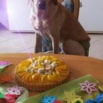 Paula am 16.April 2014 Die Maus ist jetzt 1 Jahr alt :-)