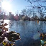 Petit étang gelé