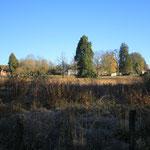 La propriété vue depuis l'étang Taureau