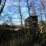 Observatoire ornithologique, sentier de l'étang Taureau, grèbes, canards, aigrette, ...